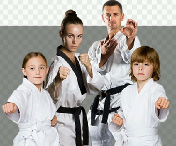 parents and kids martial art classes